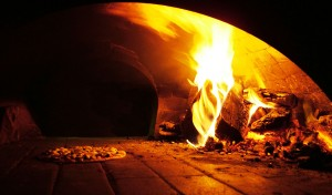 Pizza and outdoor oven fuel